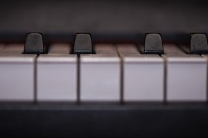 piano keys close-up, musical instrument