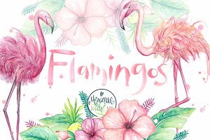 Flamingo clipart, watercolor