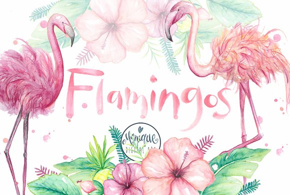 Flamingo Clipart Watercolor
