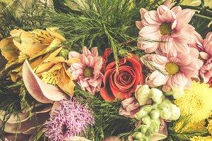 Close-up flowers composition