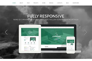 King Responsive One Page Theme
