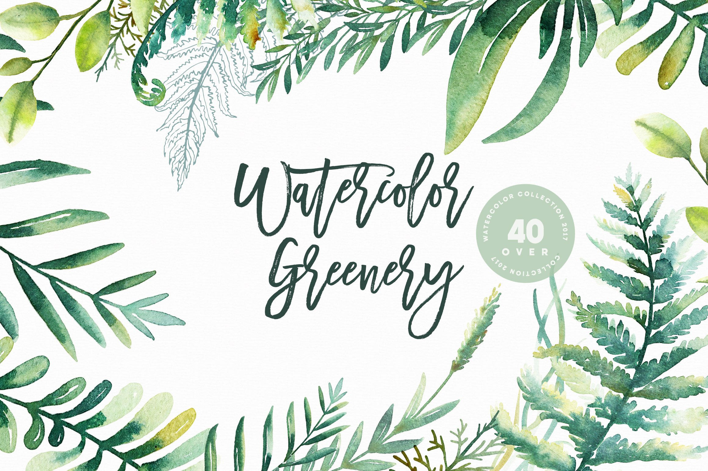 Watercolor greenery illustrations creative market for Watercolor greenery