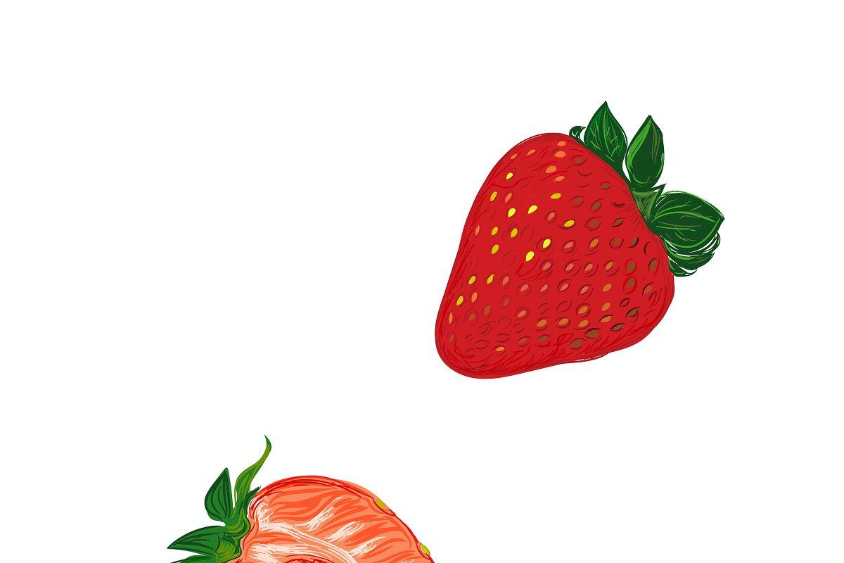 strawberries in sketch style, vector