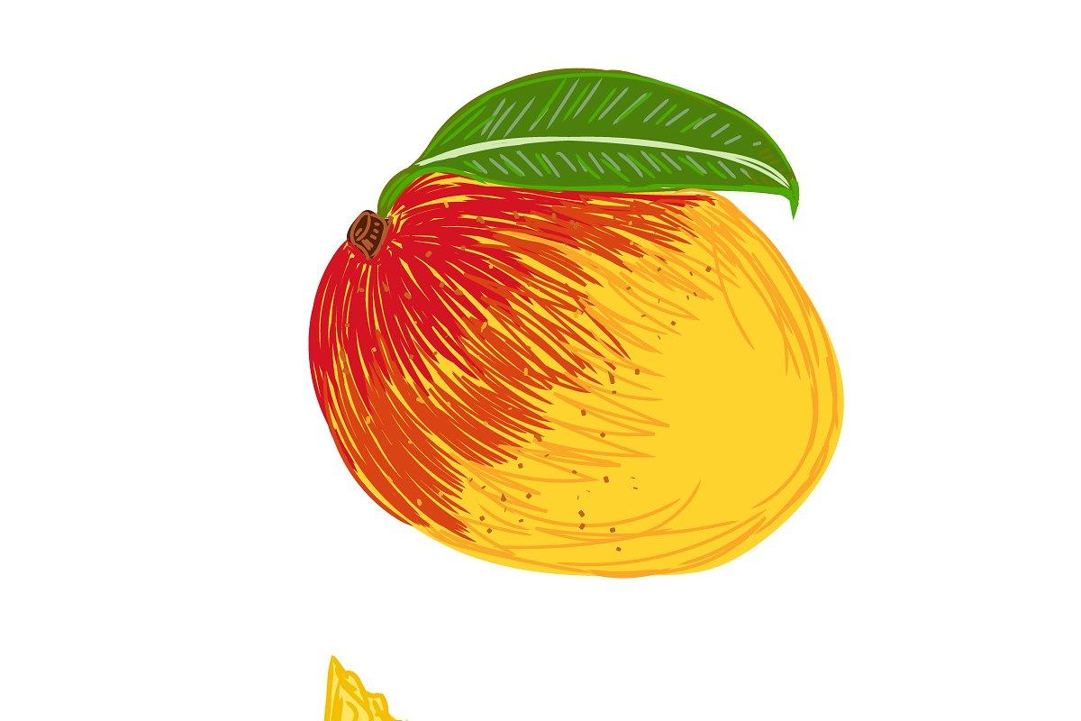 peach, sketch style, vector