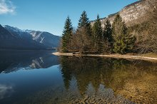 Mountains and Forest Lake Reflection