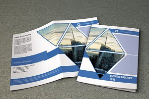 Business Brochure -Bifold-V73