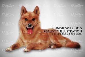 Finnish Spitz Dog Illustration