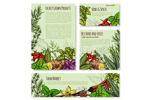 Vector templates set for spices and herbs market