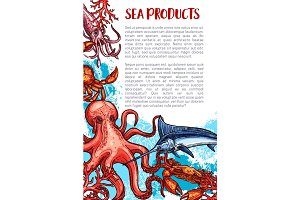 Vector seafood and fish sea product market poster
