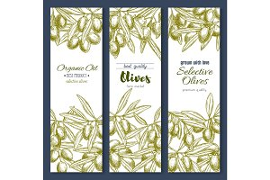 Olive branches or olives product vector banners