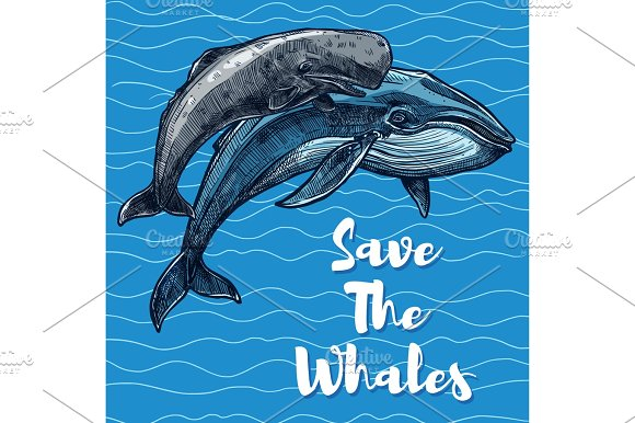 Vector Poster For Whales Saving