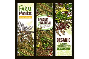 Farm grown cereals and grain vector banner set