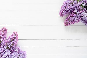 Lilacs frame background