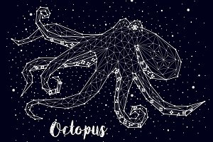 Constellation of octopus