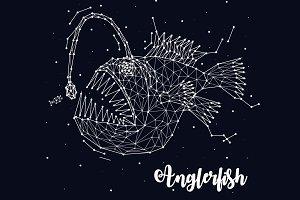 Constellation anglerfish