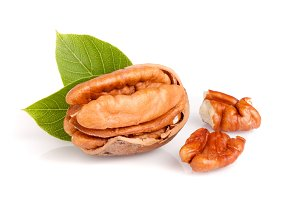 one pecan with leaves isolated on white background