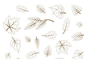Set of hand drawn cute leaves