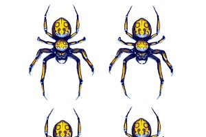 Sprite sheet of crawling spider