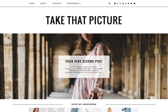 Wordpress Theme Take That Picture