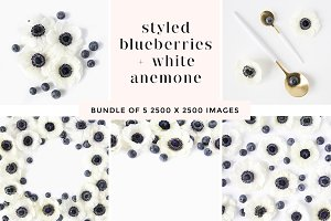 Blueberries + White Anemone Bundle