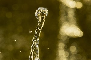 _NIK1870.drop of water