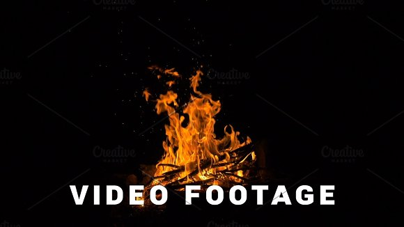 Bonfire In The Night Forest Slowmotion Shot 180 Fps