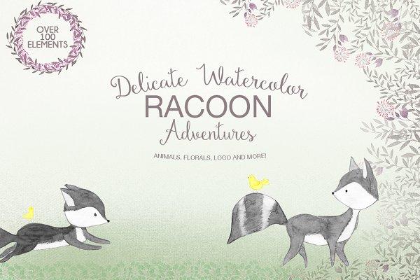 Delicate watercolor Racoon
