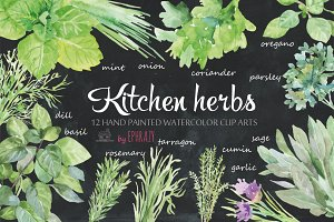 Kitchen herbs. Watercolor clipart