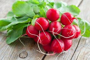 Fresh ripe radishes bundle