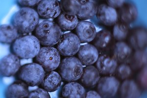 blueberries in blue bowl close up photo
