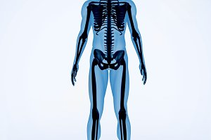 Black and blue digital skeleton