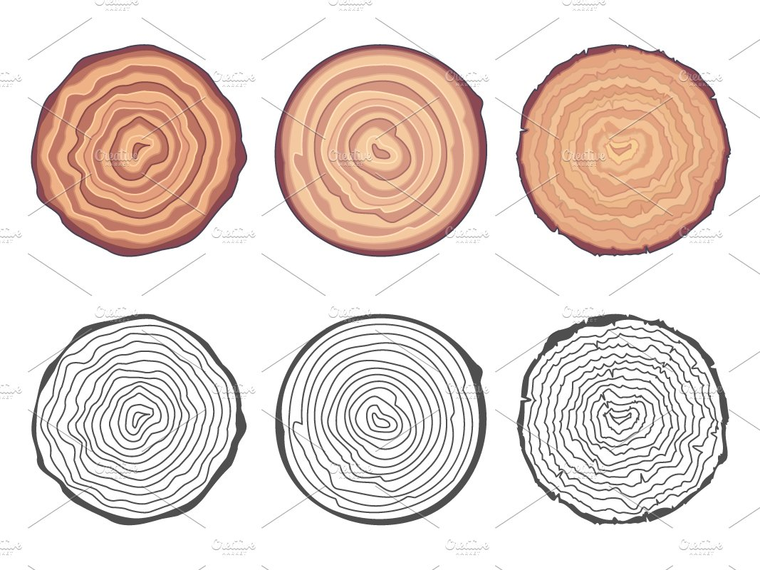 natural tree decorative design background creative trunk icons cut elements vector set market rings meilun saw illustration
