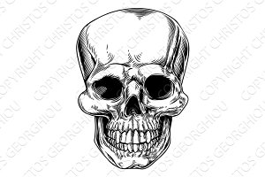 Vintage skull illustration
