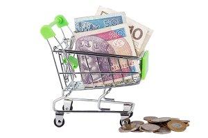 Polish zloty in the shopping pushcart, isolated