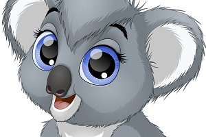 Little funny bear koala