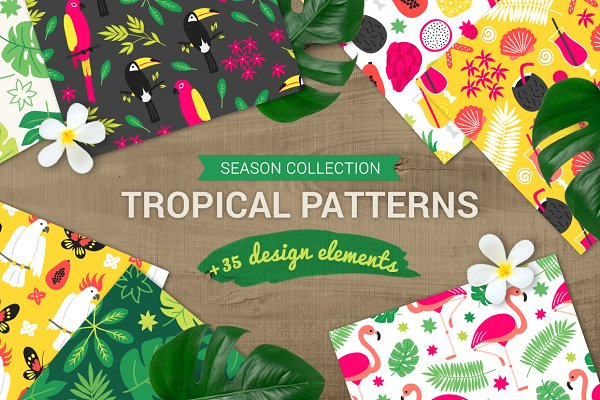 Tropical Patterns + Design Elements
