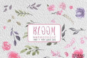 Bloom Watercolor flowers
