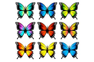 Colorful butterflies set. Vector.