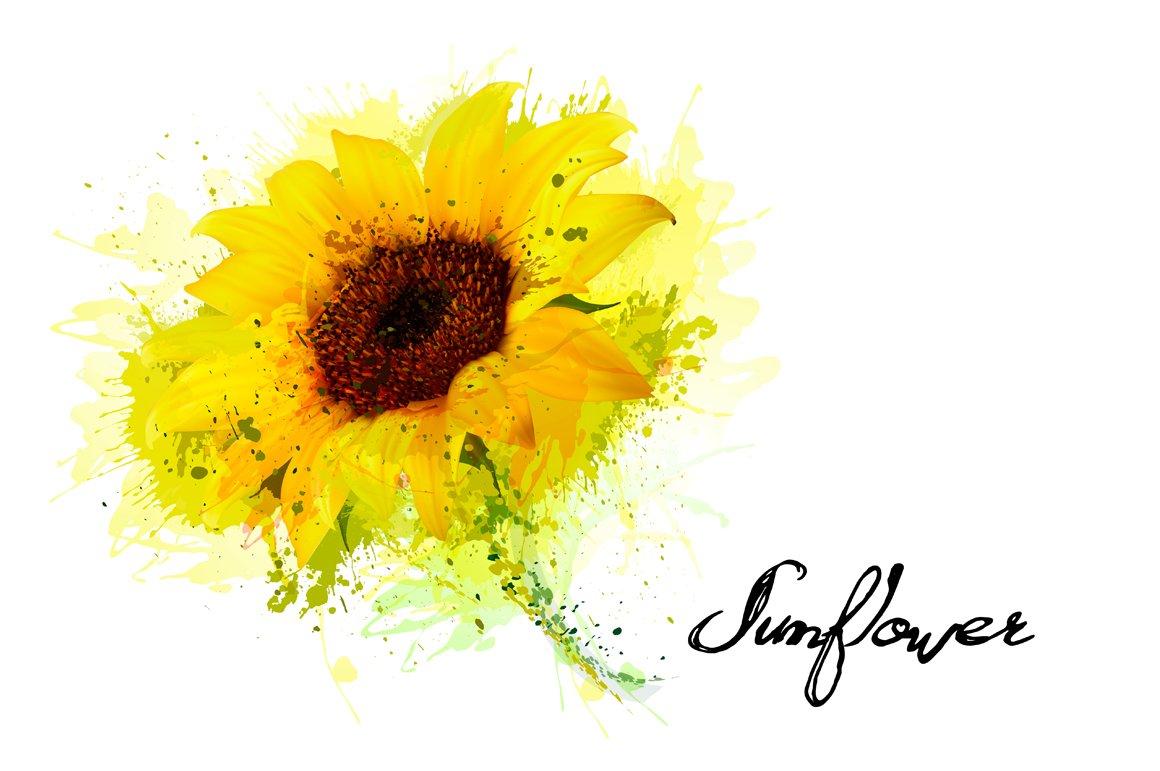 Yellow Sunflower Vector Illustrations Creative Market