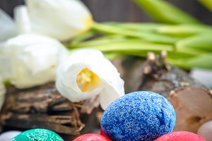 White tulips and colored Easter eggs