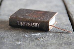 university idea