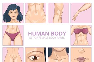 Female body parts in cartoon style