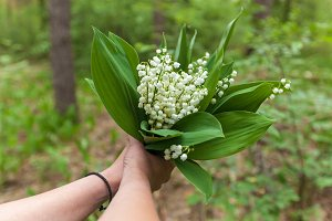 bouquet from the colors of lilies of the valley