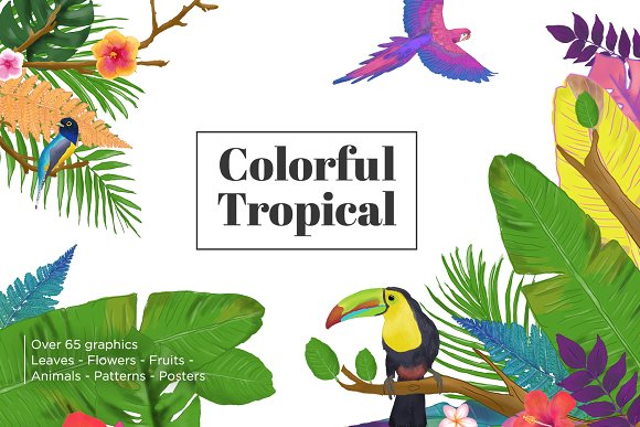 Colorful Tropical Summer Design Set