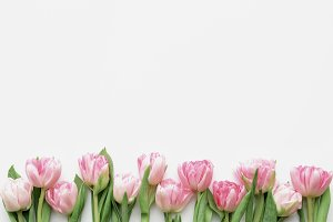 Styled stock photo - tulips