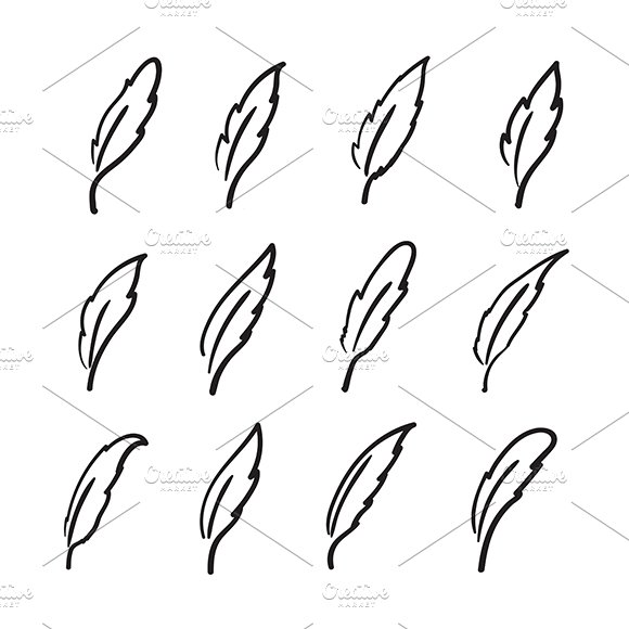 Vector group of hand drawn feather.