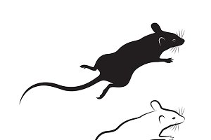 Vector of a rat design.