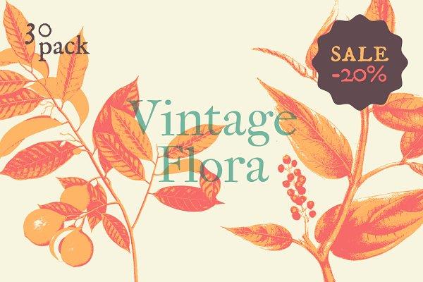 Vintage Flora