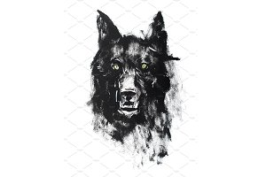 Watercolor drawing of black angry looking wolf. Animal portrait on white background.