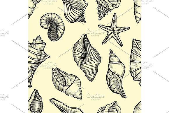 Sea Shells Seamless Background
